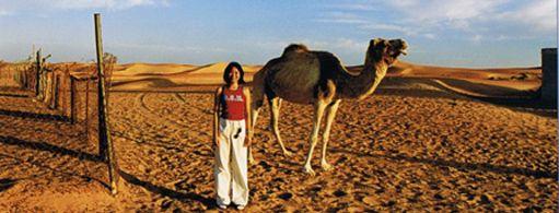 camel riding vdsf